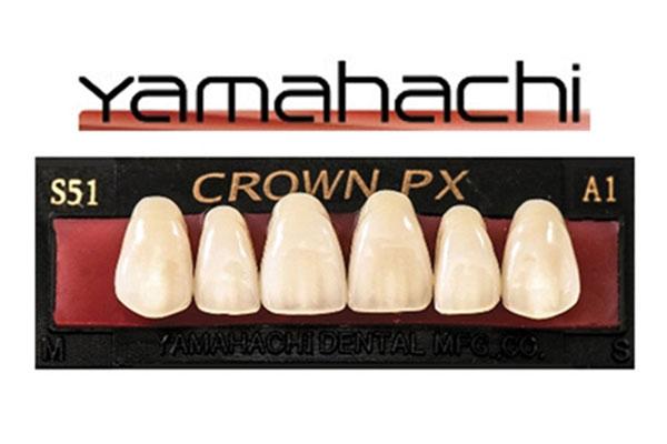 Yamahachi-teeth